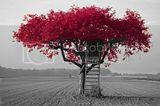 redtree